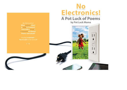 No Electronics book cover